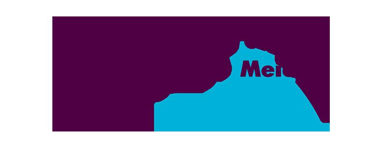 Taxicentrale-de-Meierij-logokopie